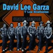 Cuatro Caminos by David Lee Garza
