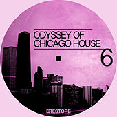 Odyssey of Chicago House, Vol. 6 by Various Artists