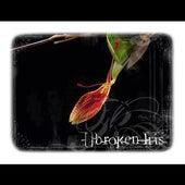 Broken Iris by Broken Iris