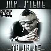 Yo No Se by Mr. Steve