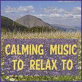 Calming Music to Relax to Featuring Zen Meditation, Deep Focus Music, & Relaxing Piano Music Consort by Various Artists