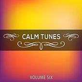 Calm Tunes, Vol. 06 by Various Artists