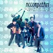 Brahms: Danse hongroise No. 5 by Accordzéâm