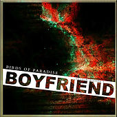 Boyfriend by The Birds Of Paradise