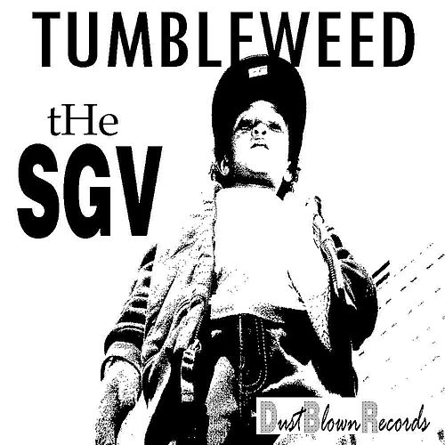The Sgv by Tumbleweed