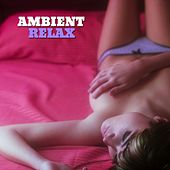 Ambient Relax, Vol. 1 by Various Artists