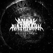 Desideratum by Anaal Nathrakh