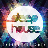 Deep House Experience 2014 by Various Artists
