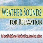 Weather Sounds for Relaxation: Your Personal Weather Channel of Nature Sounds, Ocean, Rain, And Forest Ambience by Robbins Island Music Group