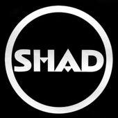 Shad by Shad