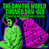 Polyfest Presents… the Day the World Turned Day-Glo - A Celebration of Poly Styrene and X-Ray Spex by Various Artists
