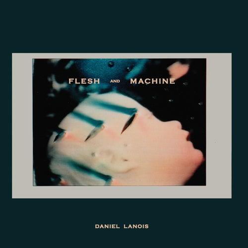 Flesh and Machine by Daniel Lanois