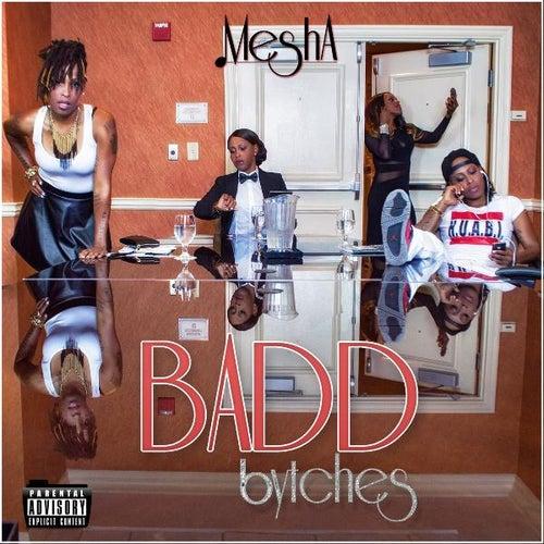 Badd Bytches by Mesha