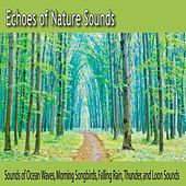 Echoes of Nature Sounds: Sounds of Ocean Waves, Morning Songbirds, Falling Rain, Thunder, And Loon Sounds by Robbins Island Music Group