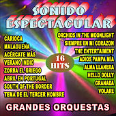 Grandes Orquestas Sonido Espectacular by Various Artists