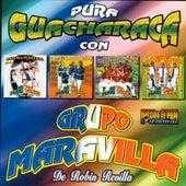 Pura Guacharaca by Grupo Maravilla