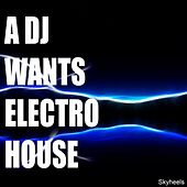 A DJ Wants Electro House by Various Artists