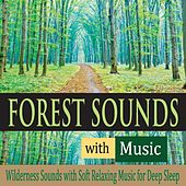 Forest Sounds With Music: Wilderness Sounds With Soft Relaxing Music for Deep Sleep by Robbins Island Music Group