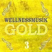 Wellnessmusik Gold 3 by Largo