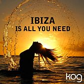 Ibiza Is All You Need by Various Artists