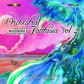 Orchestral Fantasia, Vol. 2 (Fantasy, Woodwind, Soundtrack) by Paolo Vivaldi