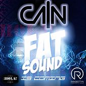 Fat Sound Is Coming by Cain (1)
