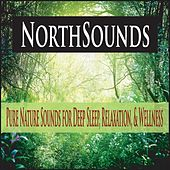 Northsounds: Pure Nature Sounds for Deep Sleep, Relaxation, & Wellness by Robbins Island Music Group