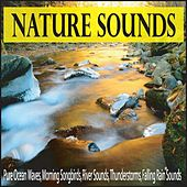 Nature Sounds: Pure Ocean Waves, Morning Songbirds, River Sounds, Thunderstorms, Falling Rain Sounds by Robbins Island Music Group