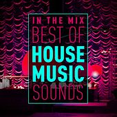 In the Mix: Best of House Music Sounds by Various Artists