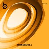 Boorama Sampler, Vol. 5 by Various Artists