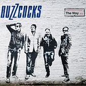 The Way by Buzzcocks