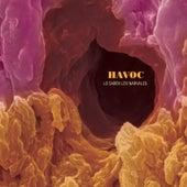 Lo Saben los Narvales by Havoc