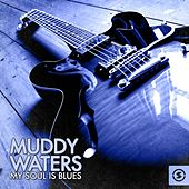 Muddy Waters - My Soul Is Blues by Various Artists