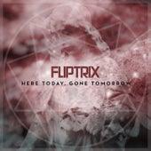 Here Today, Gone Tomorrow by Fliptrix