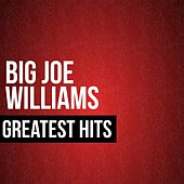 Big Joe Williams Greatest Hits by Big Joe Williams