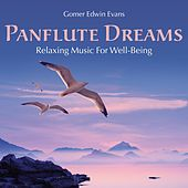 Pan Flute Dreams: Relaxing Music for Well-Being by Gomer Edwin Evans