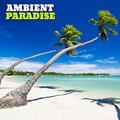 Ambient Paradise, Vol. 1 by Various Artists