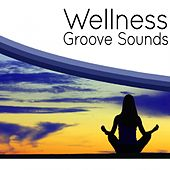 Wellness Groove Sounds by Various Artists