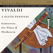 A Flute Festival by Various Artists