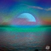 Sun by Neus