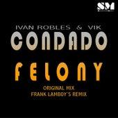 Condado Felony by Ivan Robles