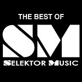 Best Of Selektor Vol. One by Various Artists