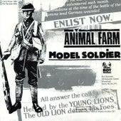 Model Soldier by Animal Farm