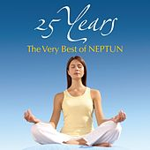 25 Years: The Very Best of NEPTUN by Various Artists