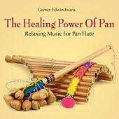 The Healing Power of Pan: Relaxing Music for Pan Flute by Gomer Edwin Evans