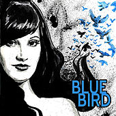 Blue Bird by Bluebird