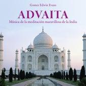 Advaita: Música de la Meditación Maravillosa de la India by Gomer Edwin Evans