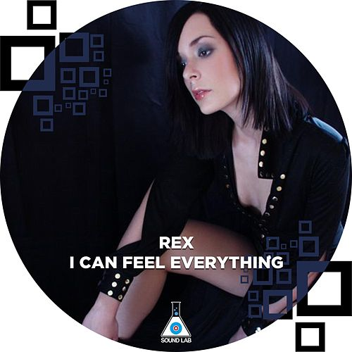 I Can Feel Everything by Rex