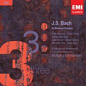 Bach: St. Matthew Passion by Suddeutscher Madrigalchor