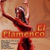 El Flamenco by Various Artists